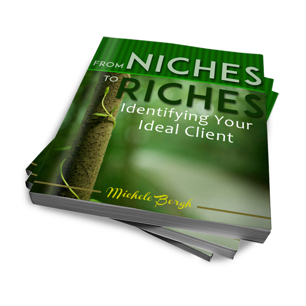 Niches to Riches ebook