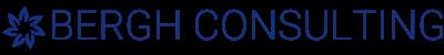 Bergh Consulting Logo Blue