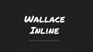 The client friendly editor for wordpress