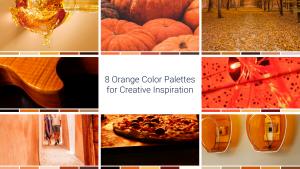 8 Orange Color Palettes for Creative Inspiration