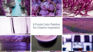 8 Purple Color Palettes for Creative Inspiration
