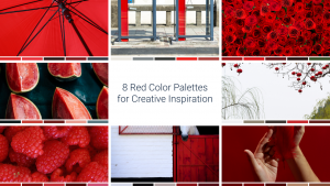 8 Red Color Palettes for Creative Inspiration